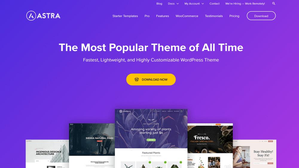 Astra - WordPress Affiliate Theme