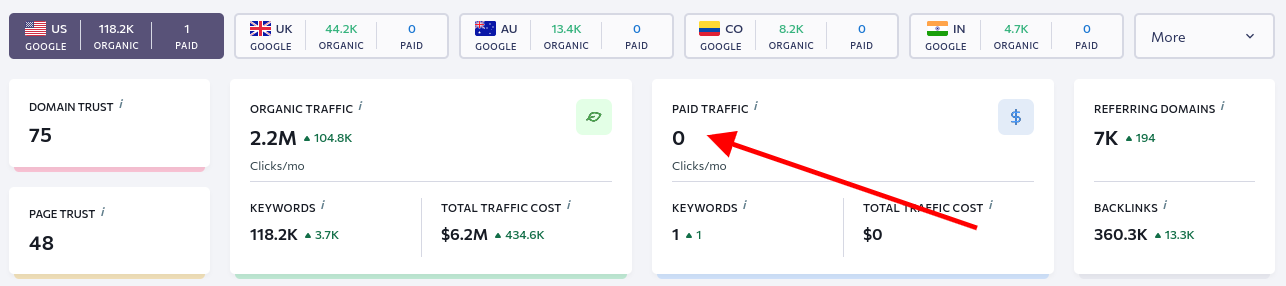 niche website example - no paid traffic